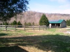 Green County Kentucky Land For Sale 305 Acres With Cabin ID#:30366